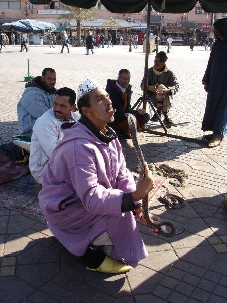 Encantador de serpentes na praça Jamna el Fna