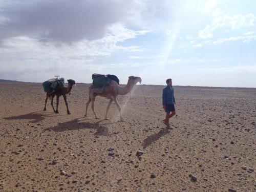 Viaje e continue viajando...(Algum lugar do Saara)