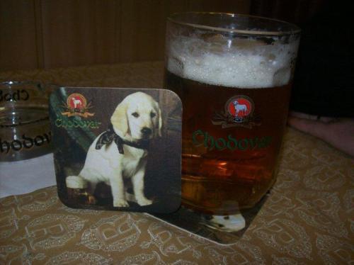 Bebida tradicional da República Tcheca