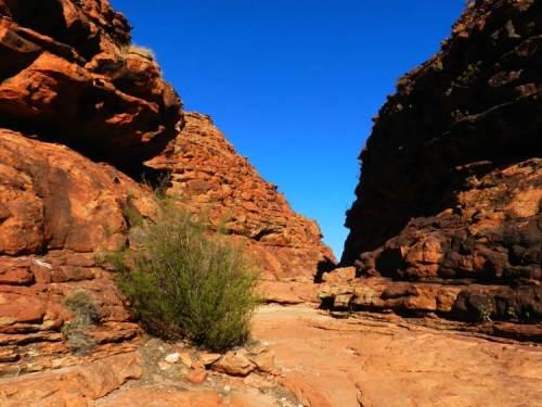 O azul e vermelho das trilhas de Kings canyon