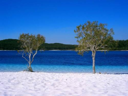 Lake Mckenzie é só uma das atrações de Fraser Island