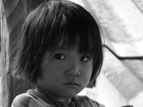 Tribo Hamong16