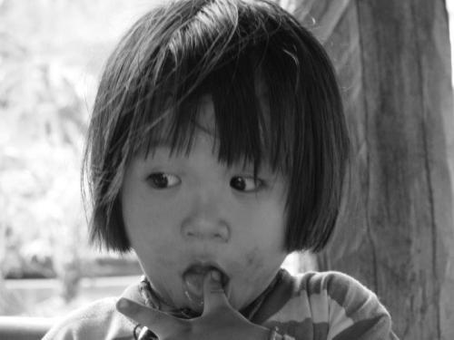 Tribo Hamong23