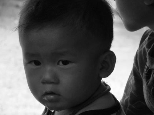 Tribo Hamong40