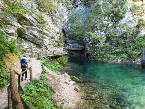 ou na volta sozinhos, o mesmo verde esmeralda das águas