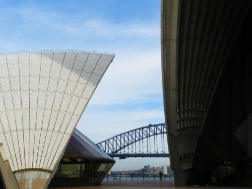 Sydney Bridge escondida pelas conchas