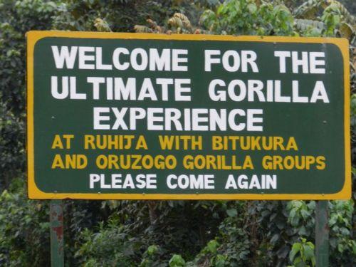 Bem vindo ao Bwindi Impenetrable Park