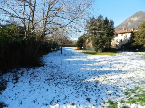 Neve nos jardins de Tavernola